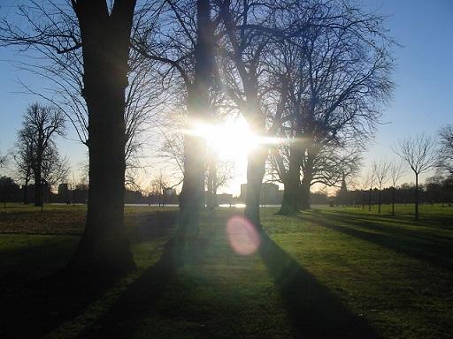 Kensingtonský park