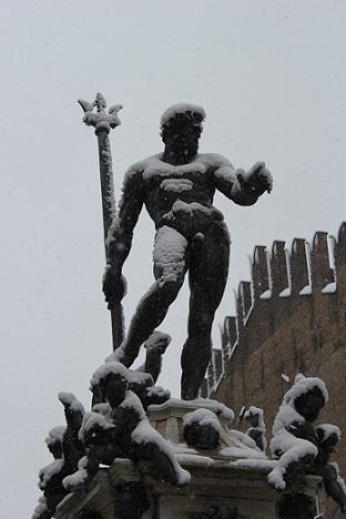 bologna-socha