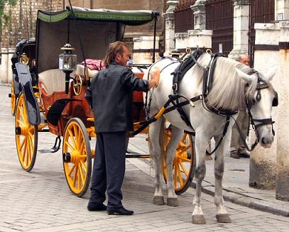 Sevilla je plná koňských povozů