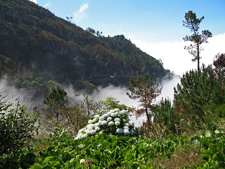 Madeira nabízí úchvatnou přírodu