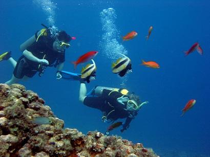 Potápění v oblasti Dahab je prostě nezapomenutelné